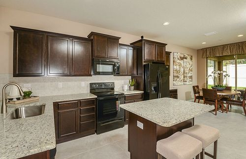 Kitchen-in-Tropic-at-Trevesta-in-Palmetto