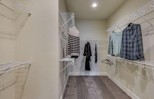 Closet-in-Bayport with basement-at-Sumerlyn-in-Auburn Hills