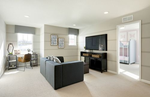 Media-Room-in-Continental-at-Linden Ridge- Expressions Collection-in-Lakeville