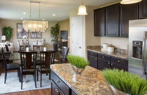 Kitchen-in-Dalton-at-Sanctuary Preserve-Expressions Collection-in-Blaine