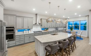 Phillips Grove by Pulte Homes in Orlando Florida