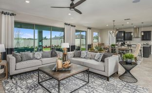 Live Oak Lake by Pulte Homes in Orlando Florida