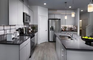 Fifth Avenue - Terrene: Brentwood, California - Pulte Homes