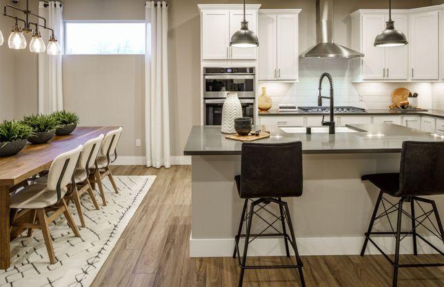 Gourmet kitchen designs
