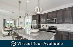 2115 Gopher Tortoise Terrace (Foxtail - Interior Unit)