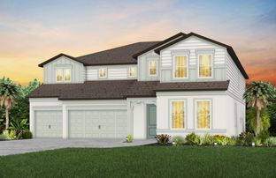 Roseland - Willowbrooke: Valrico, Florida - Pulte Homes