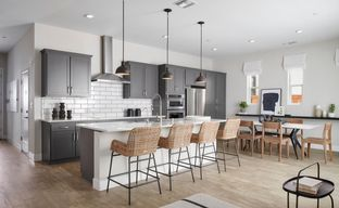 Borelle at One 90 by Pulte Homes in San Francisco California