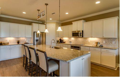 Kitchen-in-Palm-at-Rock Springs Estates-in-Apopka