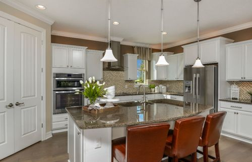Kitchen-in-Dockside-at-Epperson-in-Wesley Chapel