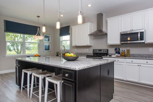 Kitchen-in-Linburn-at-Palisades-in-Clermont