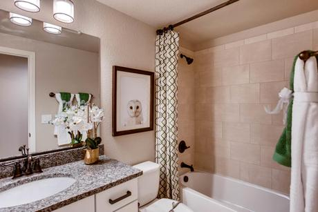 Bathroom-in-The Minturn - Promontory-at-Promontory at Todd Creek-in-Brighton