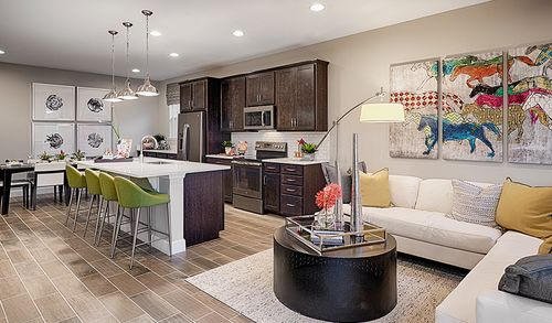 Greatroom-and-Dining-in-Onyx-at-Seasons at Pine Ridge-in-Middleburg