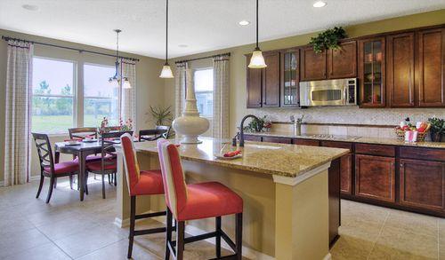 Kitchen-in-Delaney-at-Adagio at Cadence-in-Henderson