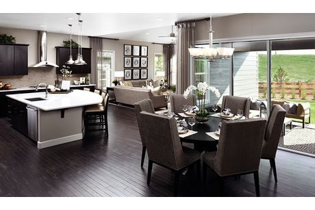 Kitchen-in-Daley-at-Forest Trace-in-Aurora