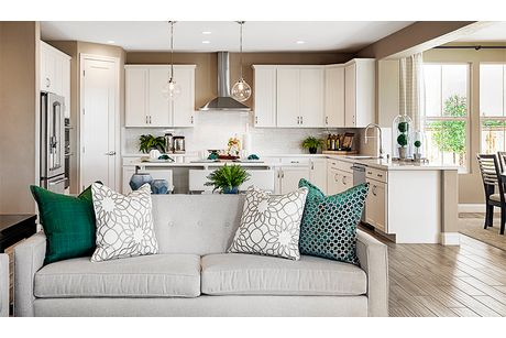 Kitchen-in-Seth-at-Orchards at Valley Glen-in-Dixon
