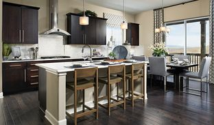 Daniel - Colliers Hill: Erie, Colorado - Richmond American Homes