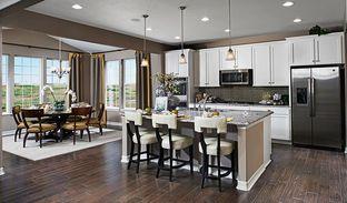 Hemingway - Colliers Hill: Erie, Colorado - Richmond American Homes
