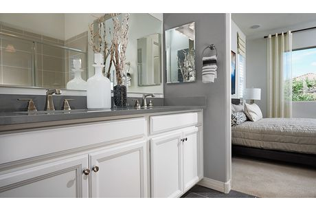 Bathroom-in-Onyx-at-Coleman Farms-in-Riverdale