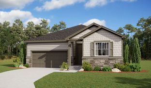 Arlington - Buffalo Grass at Homestead at Crystal Valley: Castle Rock, Colorado - Richmond American Homes