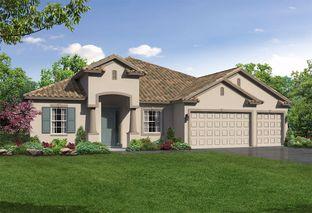 Joyce - Whiting Estates: Spring Hill, Florida - William Ryan Homes