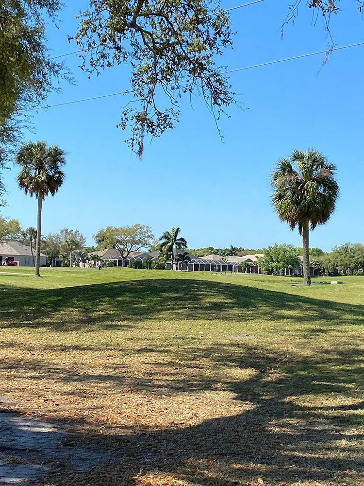 'Tea Olive Terrace at the Fairways' by William Ryan Homes - Tampa in Sarasota-Bradenton