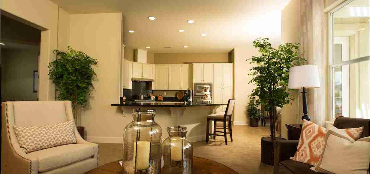 Living/Kitchen Combo