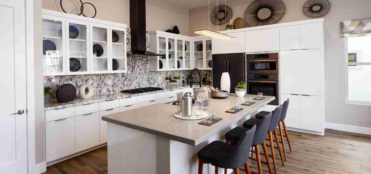Upgraded Black Stainless Appliances