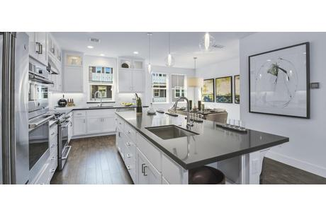 Kitchen-in-Plan 2 - Building B2-at-Enclave - Corte Madera-in-Corte Madera