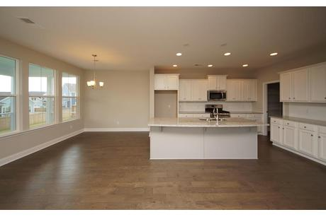 Kitchen-in-The Macintosh (HC)-at-Hunters Crossing-in-Powdersville
