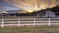 Saddlehorn by Saddlehorn in Greenville-Spartanburg South Carolina