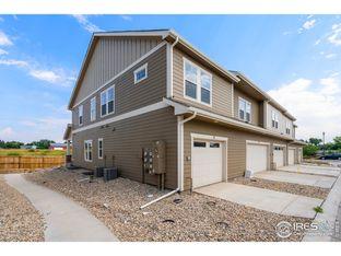 Pine Cone - Mountain's Edge: Fort Collins, Colorado - Tralon Homes LLC