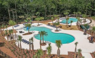 Bexley by Cardel Homes in Tampa-St. Petersburg Florida