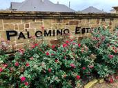 Palomino Estates by Sandlin Homes in Fort Worth Texas