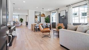 Carlton - The Preserve at Stonewood: Oakley, California - Seeno Homes