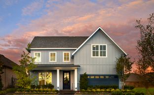 Inspiration by Shaddock Homes in Dallas Texas
