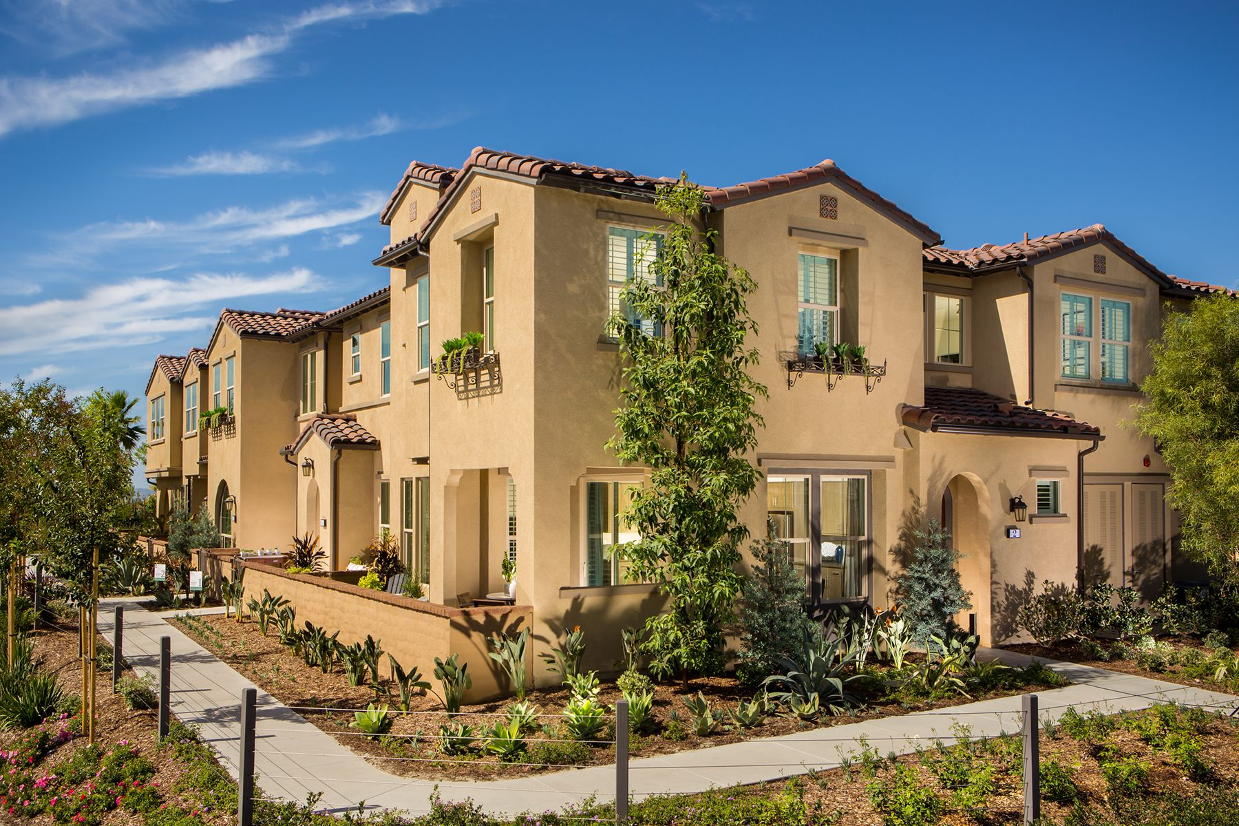 Homes In The Rowe By Shea Homes   Family