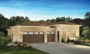 Rioja - Trilogy at The Vineyards: Brentwood, California - Shea Homes - Trilogy