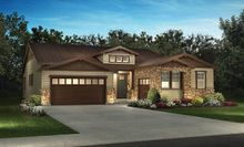 5223  Coulter Pine