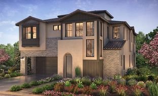Plan 2X - Teresina: Lake Forest, California - Shea Homes