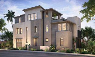 Plan 4 - Palmer at 3 Roots: San Diego, California - Shea Homes