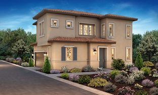 Plan 1 - Bergamo at Mountain House: Mountain House, California - Shea Homes