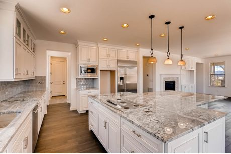 Kitchen-in-5013 Moonshadow-at-Water Dance at BackCountry-in-Highlands Ranch