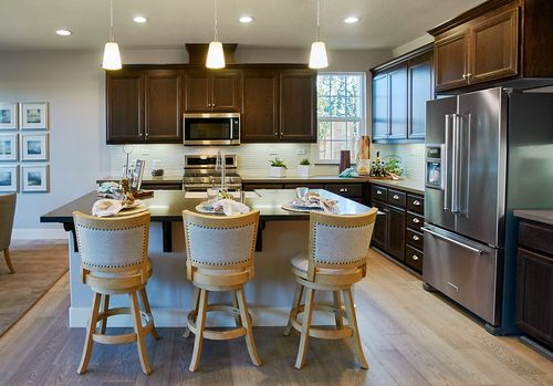 Kitchen-in-Residence 4-at-Magnolia-in-Rohnert Park