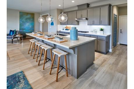 Kitchen-in-Residence 2-at-Sycamore-in-Rohnert Park