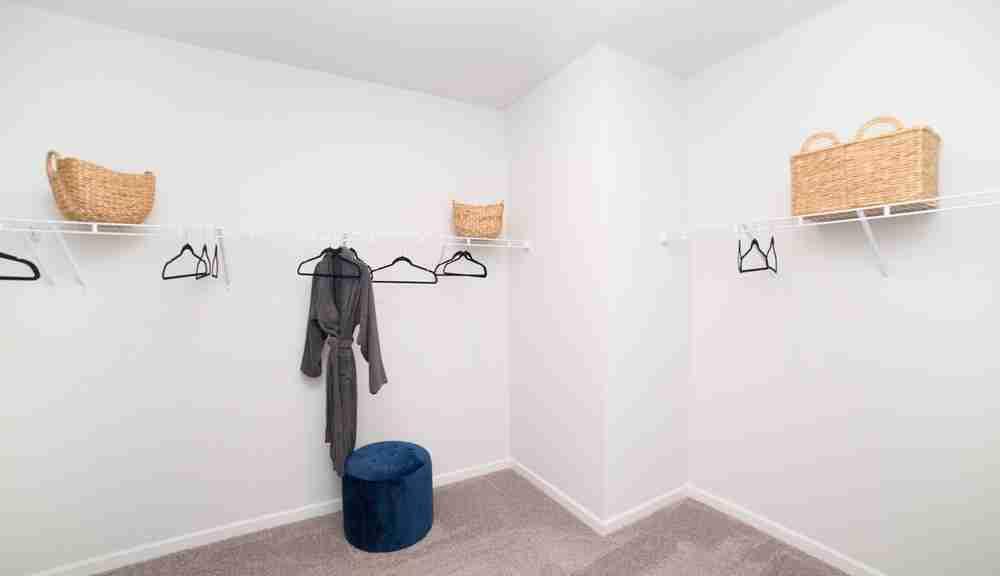 Lanier Owner's Closet