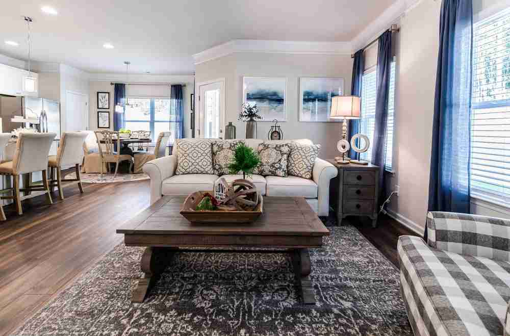 Braselton Family Room