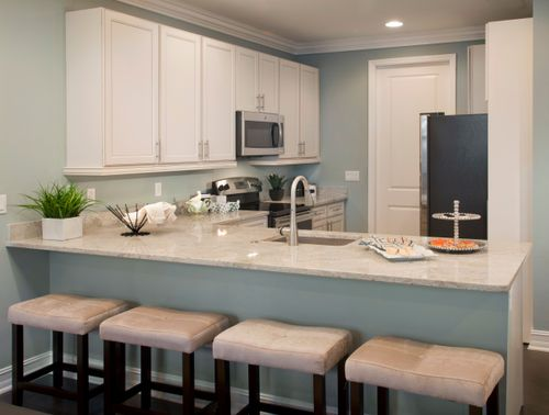 Kitchen-in-The Dahlia-at-Villa Medici-in-Fort Myers