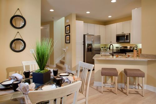 Kitchen-in-The Elmera-at-Villa Medici-in-Fort Myers
