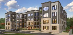 The Forrest - Tall Oaks: Reston, Maryland - Stanley Martin Homes