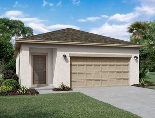 Enterprise - Lincoln Oaks: Deland, Florida - Starlight Homes